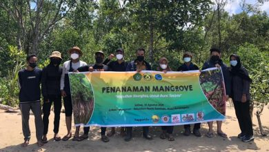 Photo of Peringati Hari Konservasi Alam Nasional, BEM FPIK UNMUL Tanam 100 Bibit Mangrove